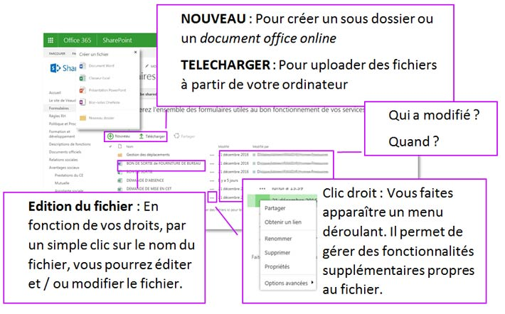 Présentation de la bibliothèque de documents sous SharePoint Online