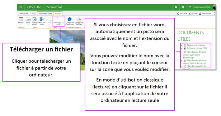 Insertion de fichiers sous SharePoint Online